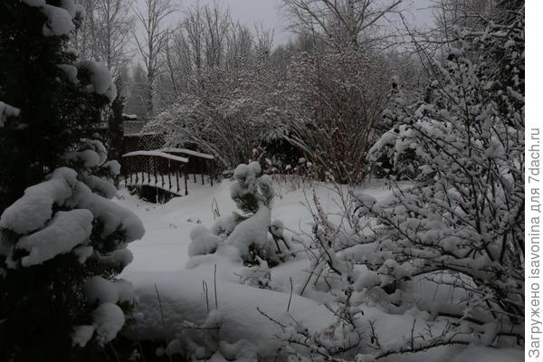 У пруда. Зима.