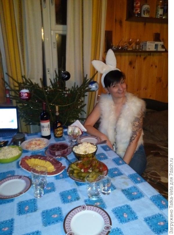 Зайка готова встретить Новый год))