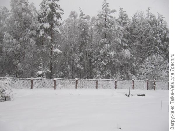 От двухметрового забора видно не больше метра, остальное под снегом скрыто.