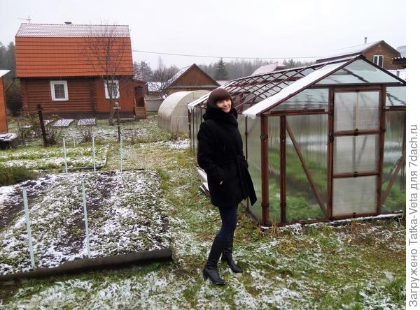Я и мой огородик - теплица, грядки...