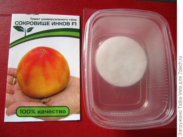 """Семена томата """"Сокровище инков f1"""" замочены в ватных дисках смоченных теплой водой."""