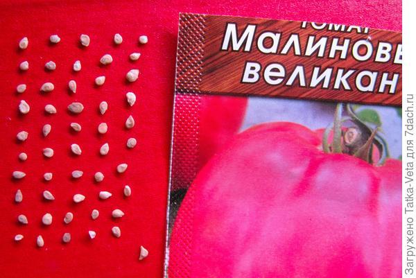 """Семена томата """"Малиновый великан"""""""