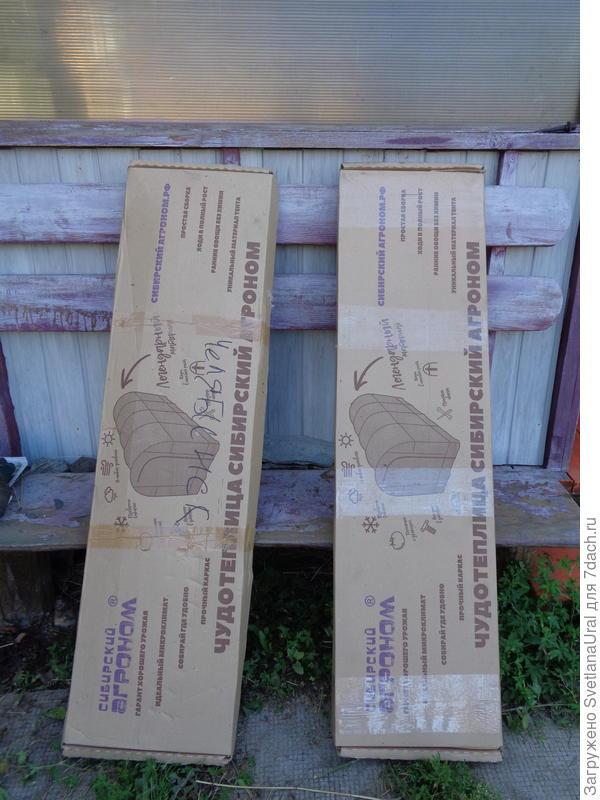 Две упаковки
