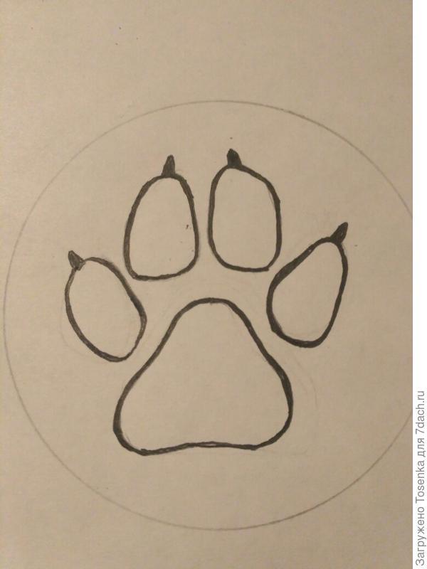 Рисунок собачьего следа (1)
