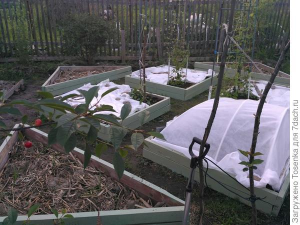 Заполняем короба декоративного огорода