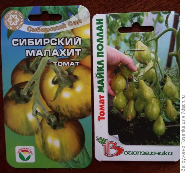Зеленые томатики