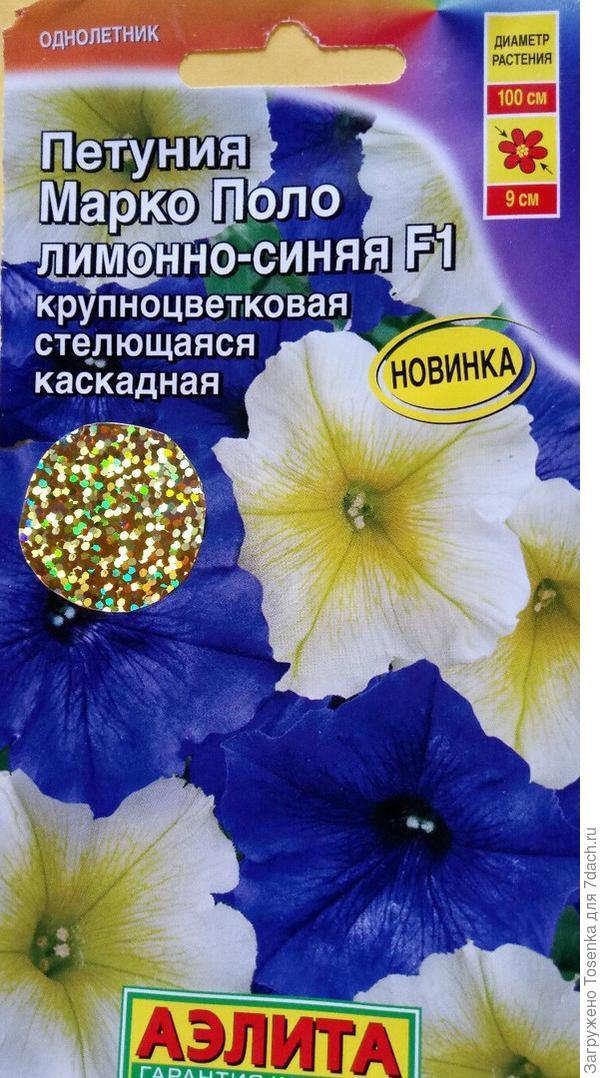 Петуния Марко Поло лимонно-синяя