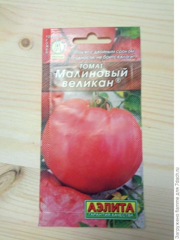 Томат МАЛИНОВЫЙ ВЕЛИКАН