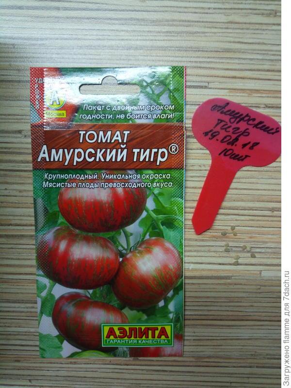 Томат АМУРСКИЙ ТИГР