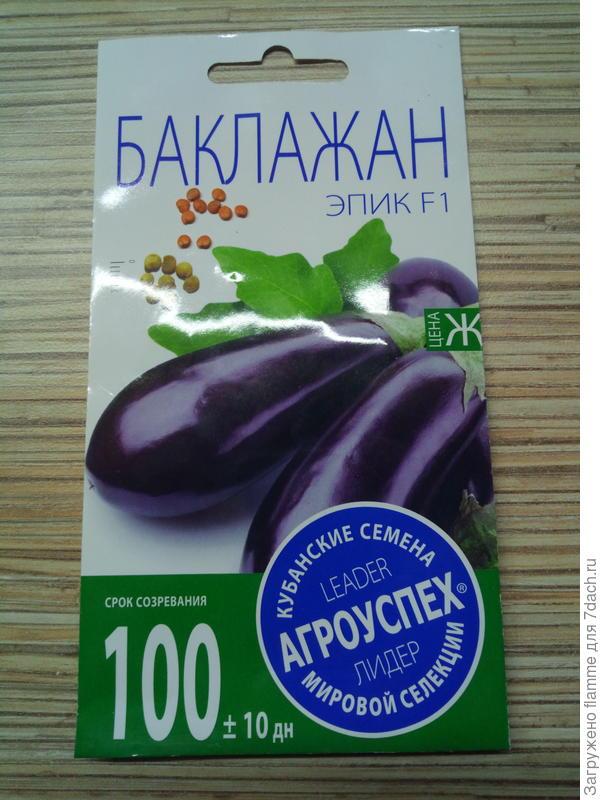 Баклажан Эпик