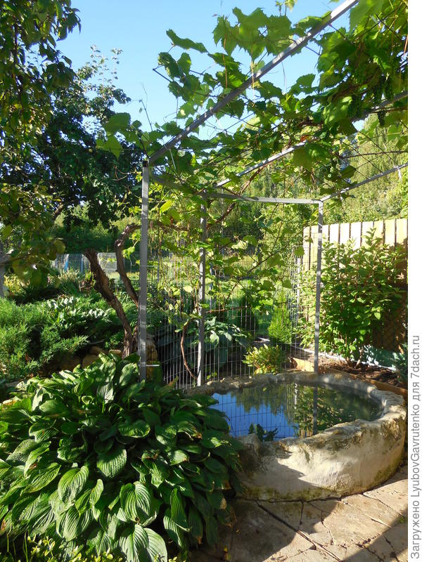 Контрастный бассейн перед баней. Буду декорировать стенки ракушками...