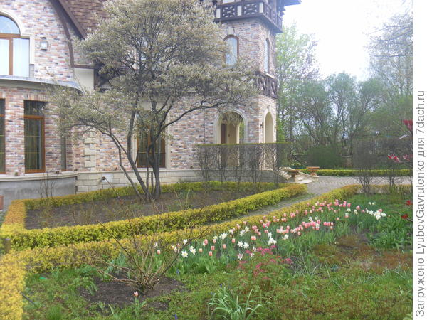 На Псковщине совершенно дивный частный сад в усадьбе Ореховно