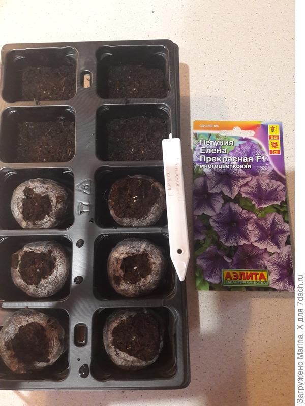 Семена посеяны