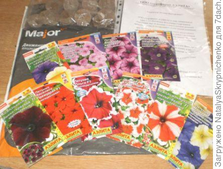 семена и торфтаблетки