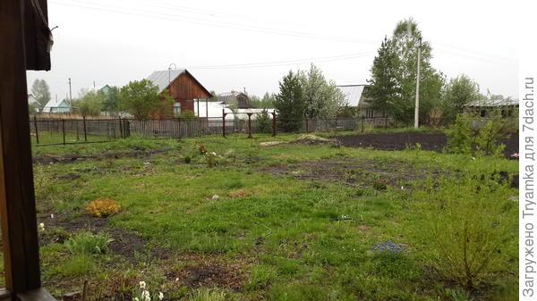 газон занимает место огорода (вид с веранды)