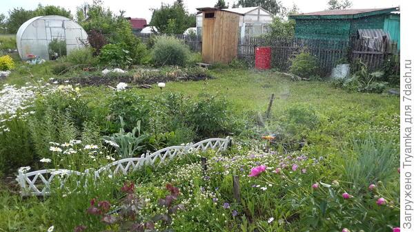 сад отвоевывает место у огорода.