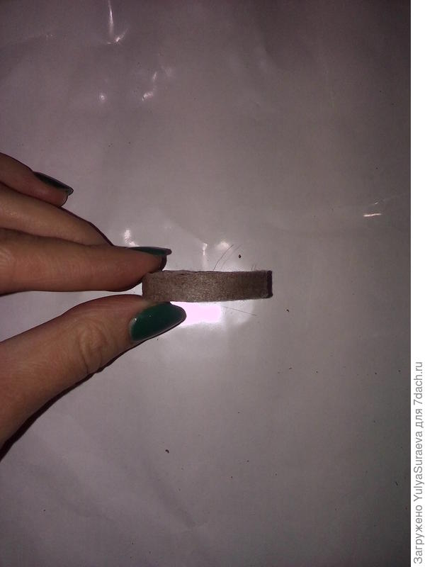 Здесь можно увидеть таблетку сбоку