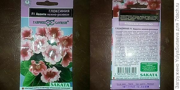 Для домашнего озеленения модные цветы
