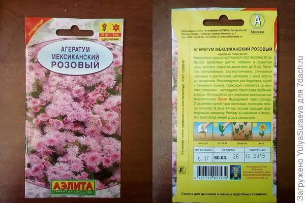 Розовый Агератум