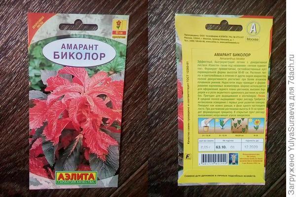 Амарант-очень жду его качественного роста