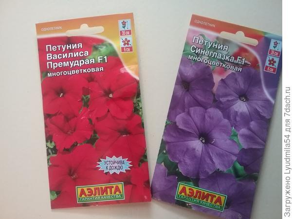 Петунии серии Русские красавицы многоцветковые Василиса препараты F1 и Синеглазка F1, каждого сорта по 10 штук. Такой сорт не приходилось выращивать, тем еще заманчивее.