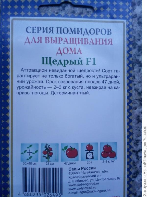 Выбранный томат сажу впервые