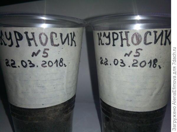 Подпись стаканчиков