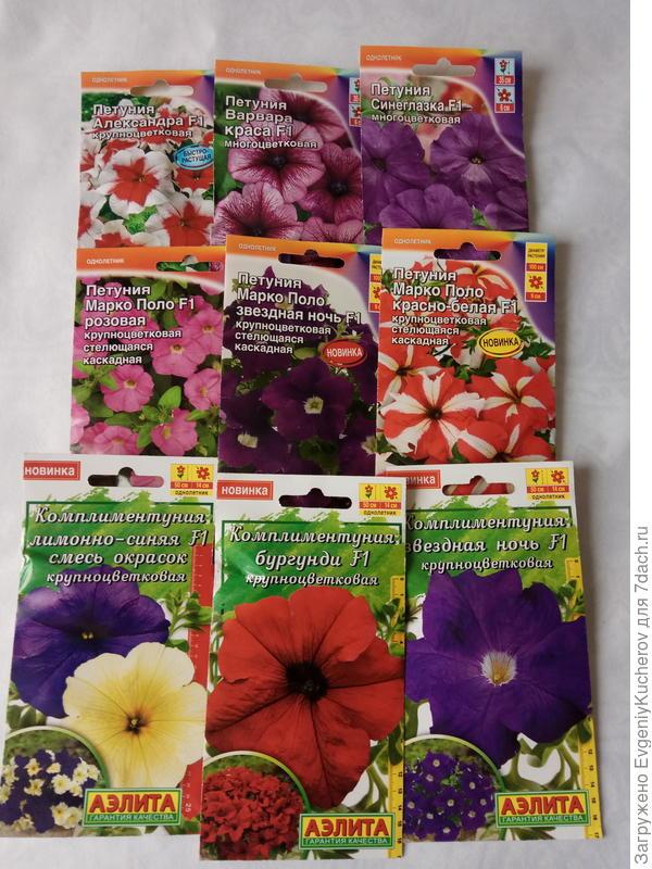 разнообразие цветов и оттенков