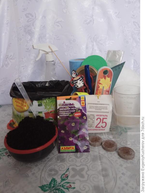 Подготовка к тестированию семян петунии