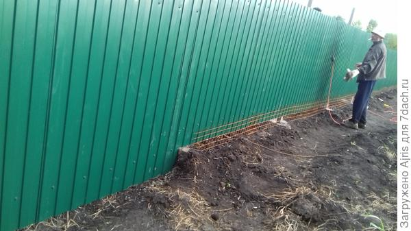 Сплошной забор из профлиста. Понизу - кладочная сетка