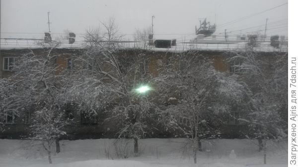 А у нас сегодня опять зима за окном