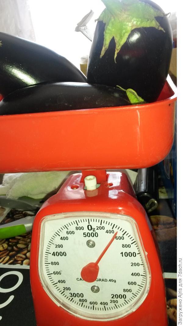 Примерно 500 грамм