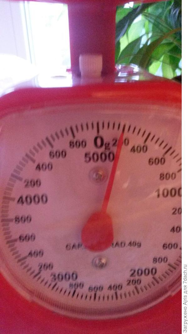 Аж 200 грамм самая большая помидорка из первых собранных