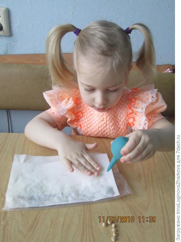 Подготовка пелёнки для роста горошка
