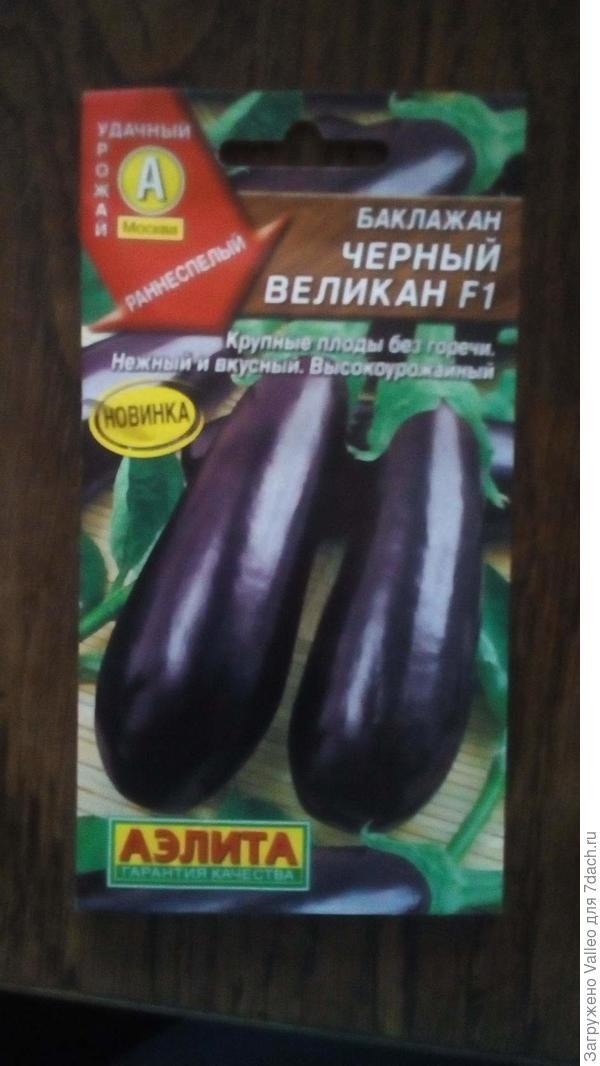 """Пакет с семенами """"Черный великан"""""""