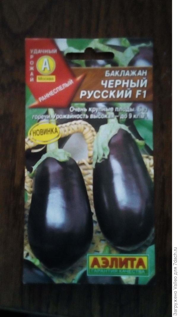 """Пакет с семенами """"Черный русский F1"""""""