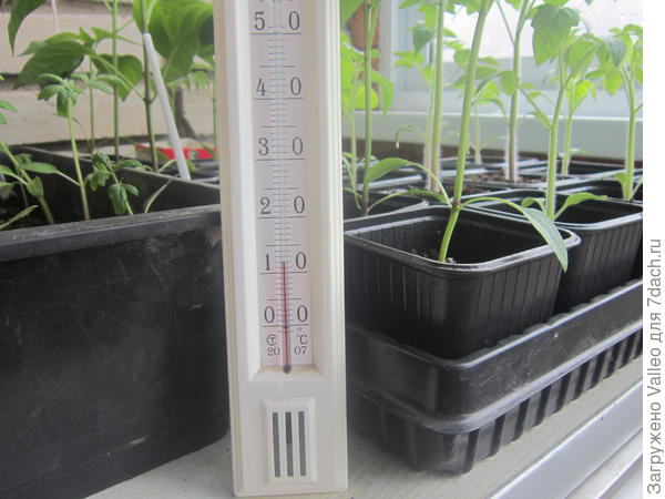Температура воздуха на балконе 12 градусов