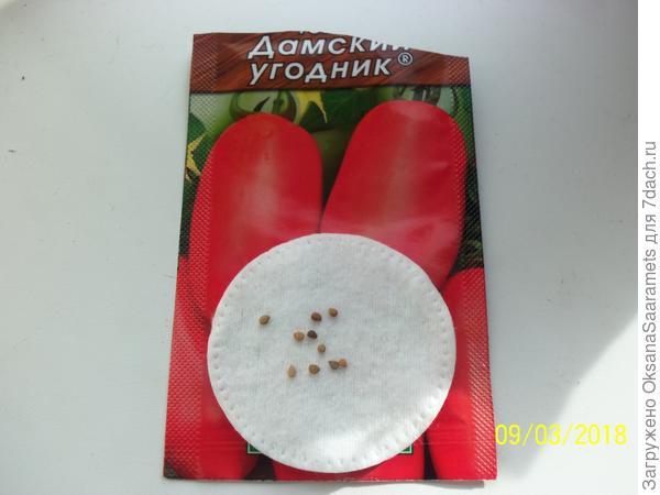 Семена Дамский угодник