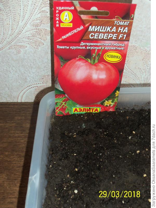 Посев