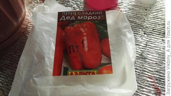 Контейнер с семенами в пакете