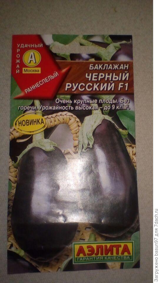Баклажан Черный Русский F1