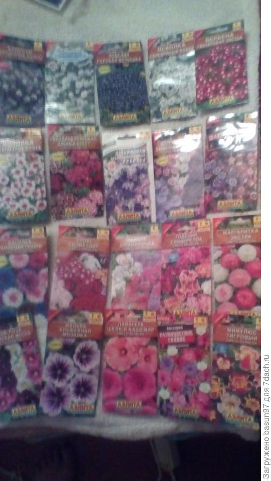 Цветы на любой вкус