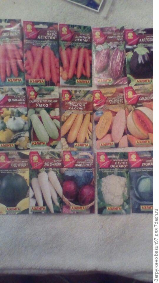 Сладкая морковка ,баклажанчики,кабачки,дынька с арбузом,капуста