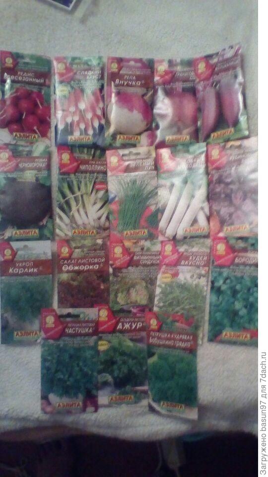 Различные корнеплоды,луки и ароматная зелень,что уже пахнет летом
