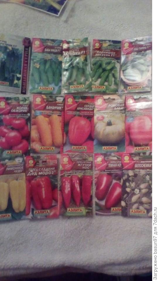 Высокоурожайные огурчики,необычные томаты,интересные перчики