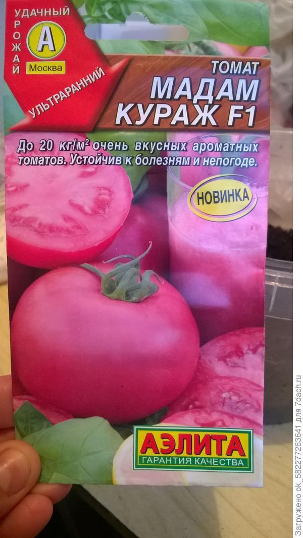 1.04.18 посев семян томата Мадам кураж