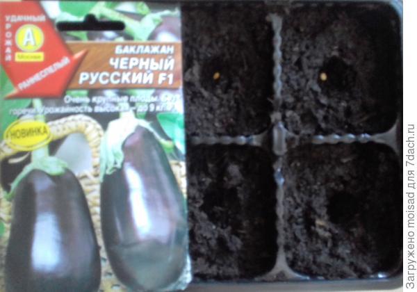 Крупноплодный раннеспелый гибрид. 04.03.2018г посадка в кассеты по одному, всего 6 шт. семян.  Семена высажены в грунт без замачивания, температура 23-25C.