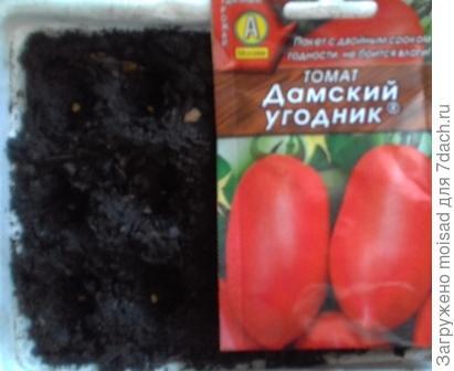 Популярный среднеспелый сорт для открытого грунта и пленочных теплиц. 04.03.2018г посадка в ящички на расстоянии 1,5 – 2см, всего 12 шт. Семена высажены в грунт без замачивания, температура 23-25C.
