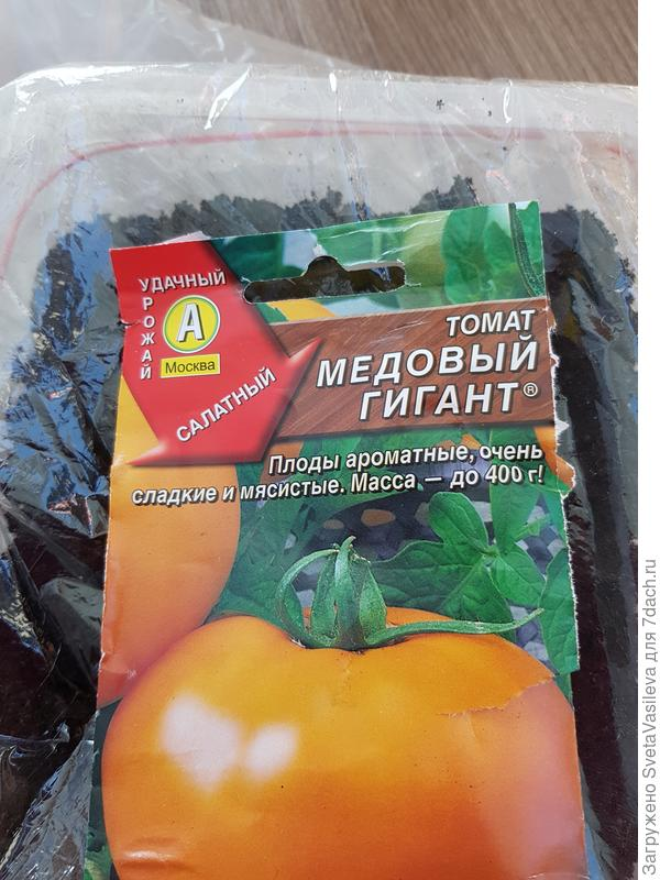 """Посадка томата """"Медовый гигант"""" в грунт для рассады"""