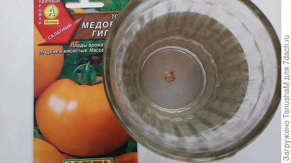 Отобранные семена прошли колибровку -100%.